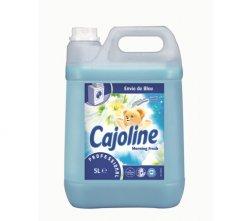 CAJOLINE PROF 5LT